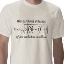 Airspeed of an Unladen Swallow Shirt